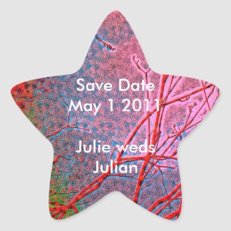 STAR Miracles - Save Date for Holy Fortunes Star Sticker