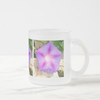 Star Shaped Morning Glory With Glistening Water Frosted Glass Mug