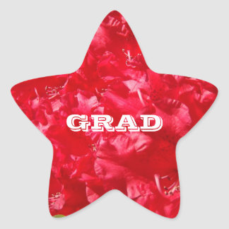 Star Shaped stickers Envelope Seals GRAD Red