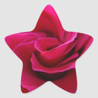 Star shaped stickers Pink Rose Flower Add Text