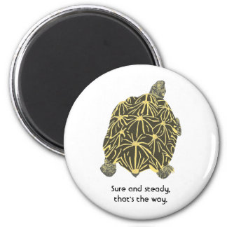 Star tortoise, affirmation, Sure & Steady magnets