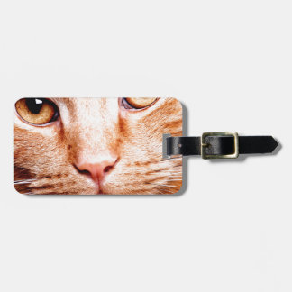 Stare Luggage Tag