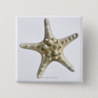 Starfish 15 Cm Square Badge
