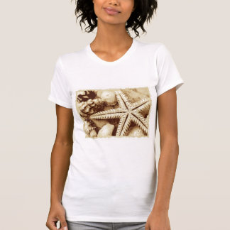 Starfish and Seashells Womens T-Shirt