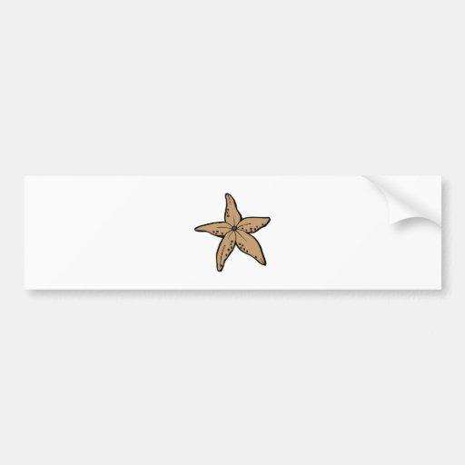 Starfish Bumper Stickers