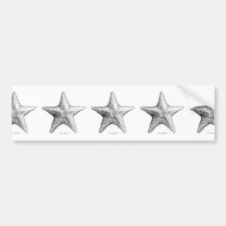 Starfish Drawing Black & White Sea Star Art Bumper Sticker
