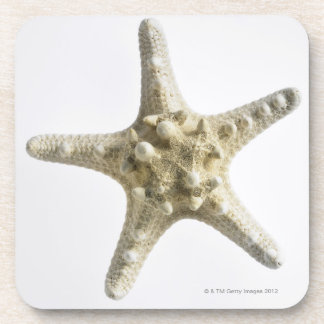 Starfish Drink Coasters