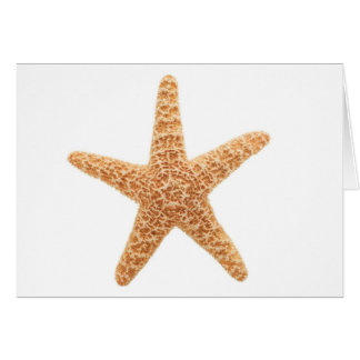starfish fun card