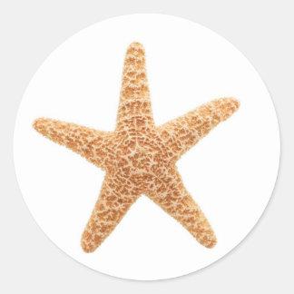starfish fun classic round sticker