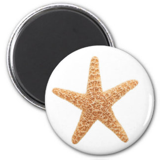 starfish fun magnet