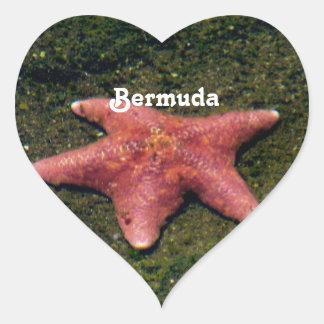 Starfish Heart Sticker