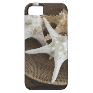 Starfish in a basket iPhone 5 covers