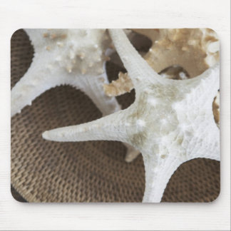 Starfish in a basket mouse mat