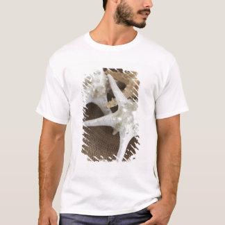 Starfish in a basket T-Shirt
