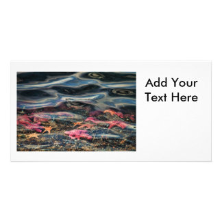 Starfish in the Ocean Personalised Photo Card