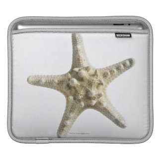 Starfish iPad Sleeve