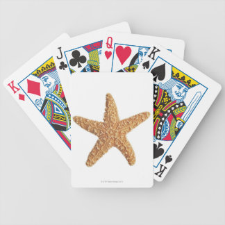 Starfish isolated on white bicycle playing cards