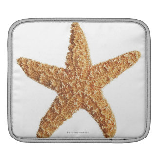 Starfish isolated on white iPad sleeve
