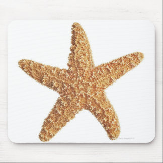 Starfish isolated on white mouse pad