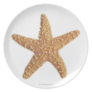 Starfish isolated on white plate