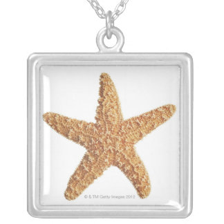 Starfish isolated on white silver plated necklace