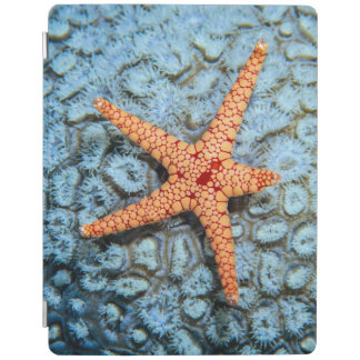 Starfish On A Coral With Polips iPad Cover