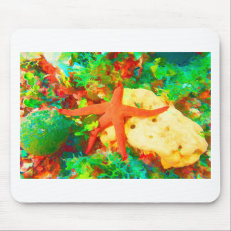 Starfish on a Sponge Mouse Mat