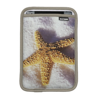 Starfish On A Towel iPad Mini Sleeves