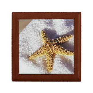 Starfish On A Towel Small Square Gift Box