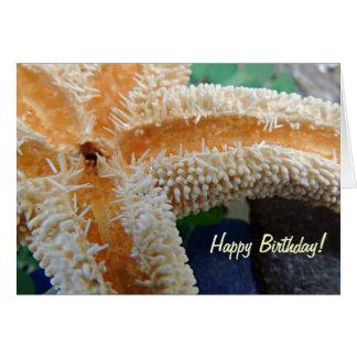 Starfish on Beach Glass Birthday Card