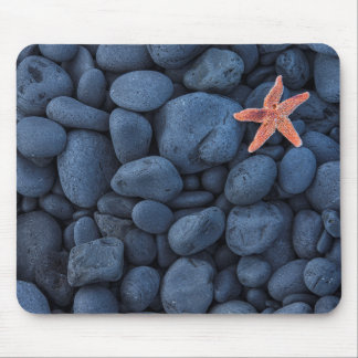 Starfish On Black Rocks Along The Coast | Iceland Mouse Mat