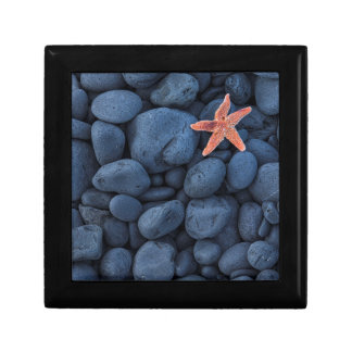 Starfish On Black Rocks Along The Coast | Iceland Small Square Gift Box