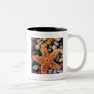 Starfish On Rocks Two-Tone Coffee Mug