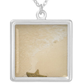 Starfish on sandy beach, Gibbs Cay Land and Square Pendant Necklace