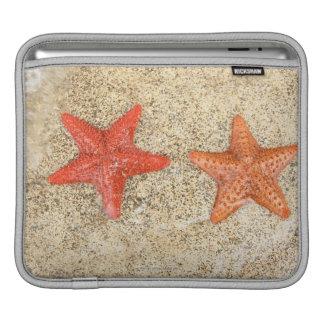 starfish on the beach, at the edge of the ocean iPad sleeve