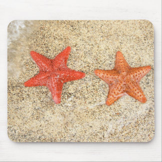 starfish on the beach, at the edge of the ocean mouse mat