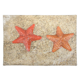 starfish on the beach, at the edge of the ocean placemat