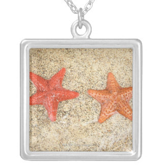 starfish on the beach, at the edge of the ocean silver plated necklace