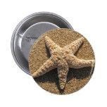 Starfish on the beach pins