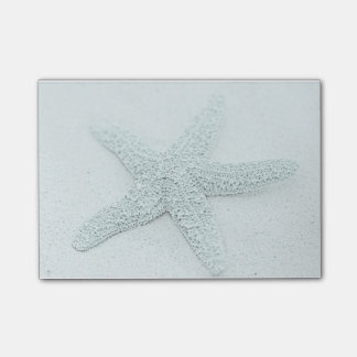 Starfish Post-it® Notes