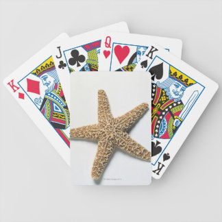 Starfish shell on white background bicycle playing cards
