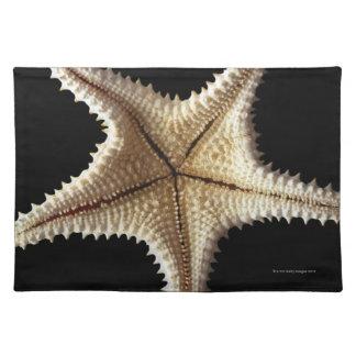 Starfish skeleton, close-up 2 placemat