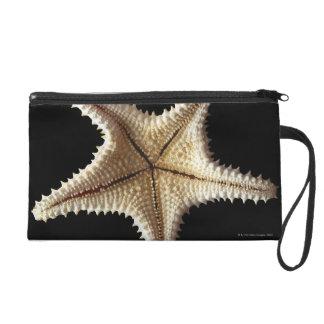 Starfish skeleton, close-up 2 wristlet