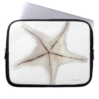 Starfish skeleton, close-up laptop sleeve