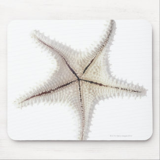 Starfish skeleton, close-up mouse mat