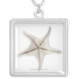Starfish skeleton, close-up silver plated necklace