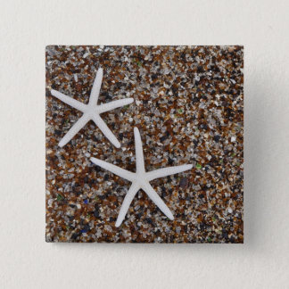 Starfish skeletons on Glass Beach 15 Cm Square Badge