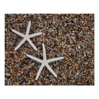 Starfish skeletons on Glass Beach Poster