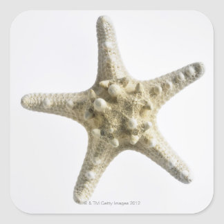 Starfish Square Sticker