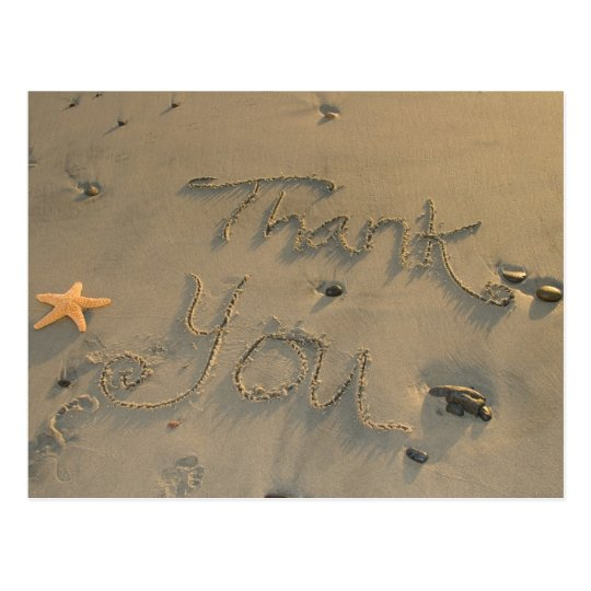 Starfish Thank You Postcard
